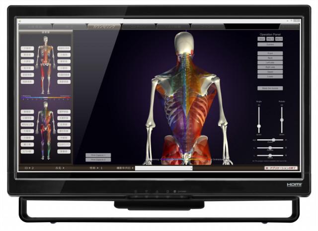 姿勢分析の測定